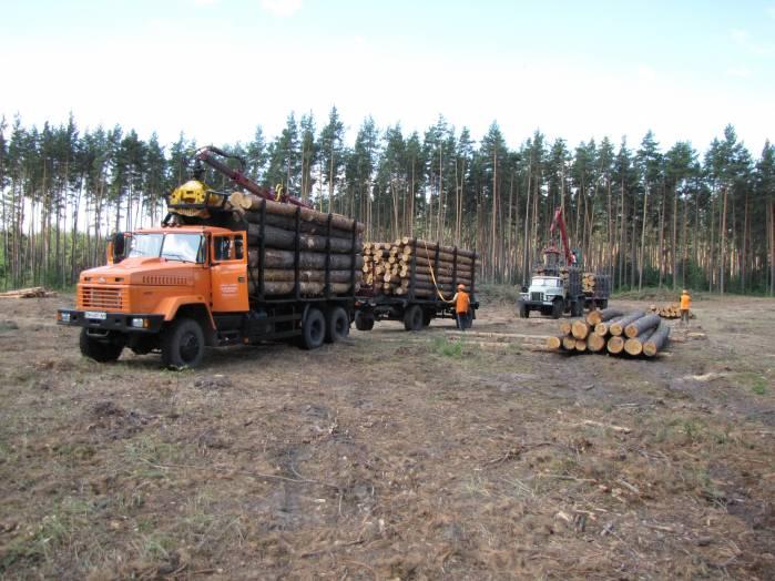 Коллегия Сумского обласного управления лесного и охотничьего хозяйства